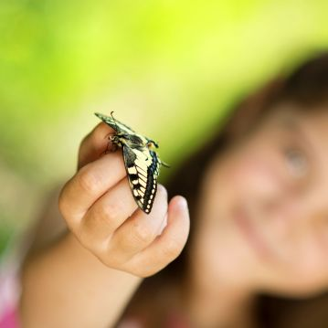 19914907 - little girl is playing with butterfly in nature
